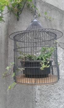 recup cage oiseau deco exterieure